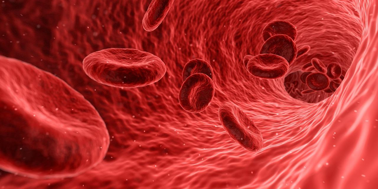 Ученые назвали наиболее устойчивую к раку группу крови